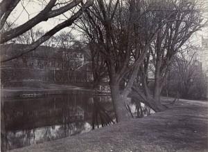 1908_Ladegaard_Aa